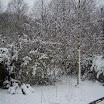 Rooksdown » December 2006