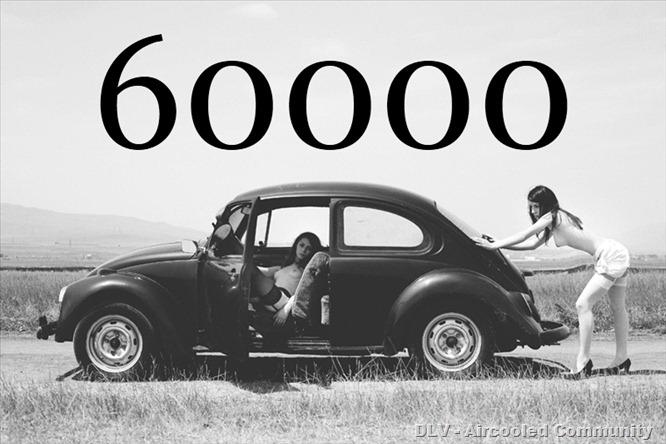 60000_Bug