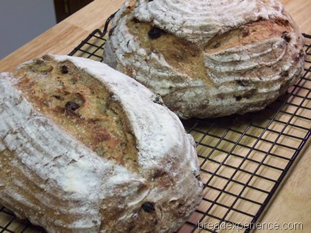 sourdough-rye-raisins-walnuts 040