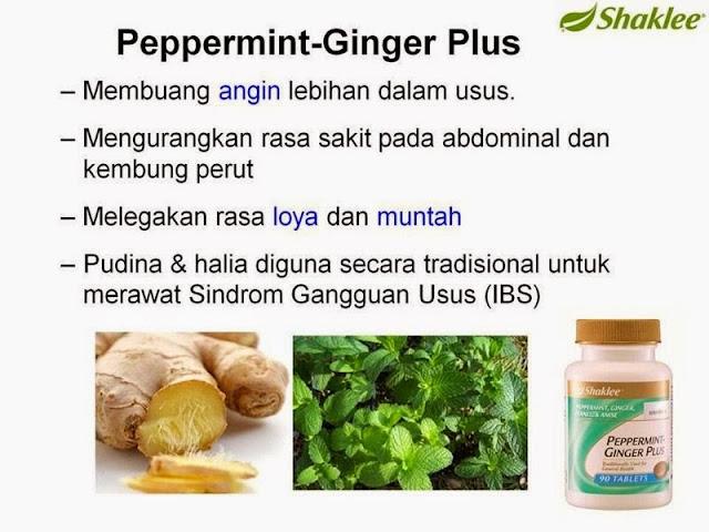peppermint-ginger plus melegakan ketidakselesaan perut