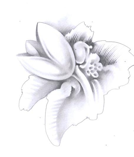 Image-08
