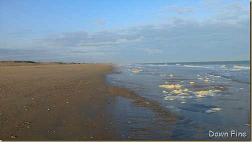 Edisto Beach State Park_053