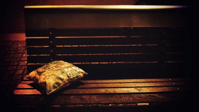park pillow