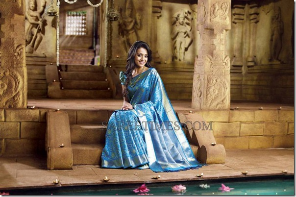 Trisha_Traditional_Saree (4)