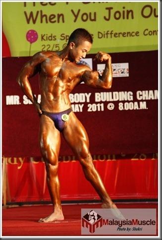 Mr_Selangor_2011[2]