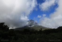 2011-08-26_Pico1