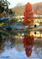 Rouelles lac