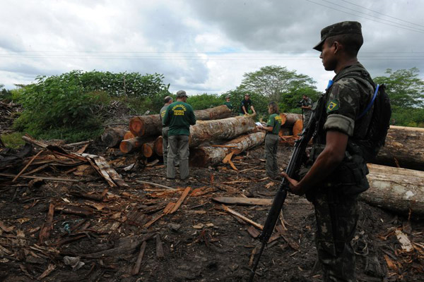 Brazilian soldiers encounter illegal logging in the Amazon. Brazil has launched a military campaign to evict illegal loggers working from the fringes of an indigenous reserve home to the Awá people, reports Survival International. Photo: Exército Brasileiro