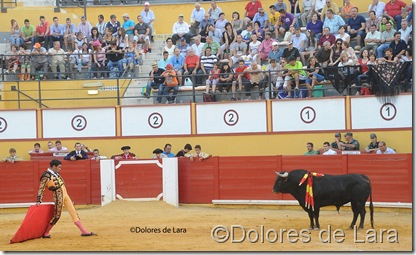 ©Dolores de Lara (99)