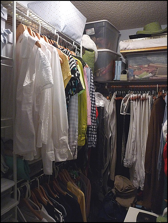 2012 Closet BEFORE Purge 003