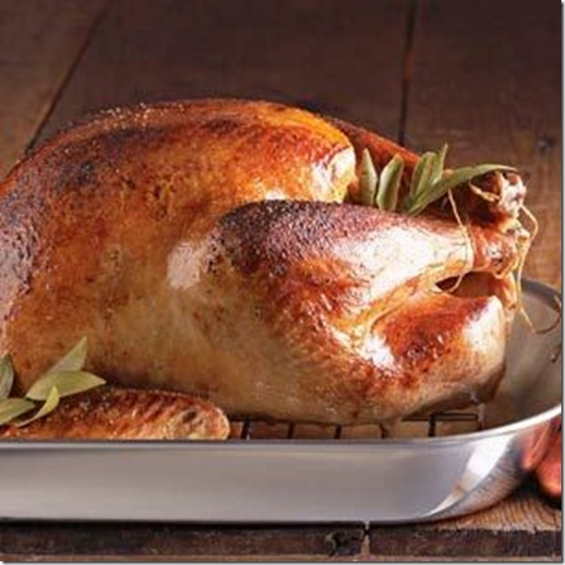 turkey%20Williams%20Sonoma