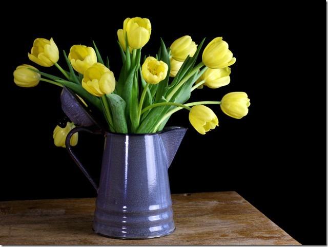 tulips-vase