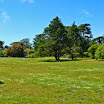 San Francisco - Botanical Garden San Fran