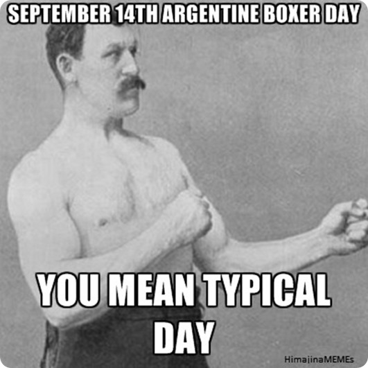 ARGENTINE BOXER DAY