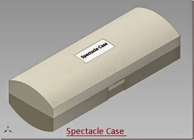 Spectacle Case _1