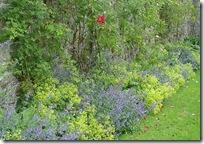 kailie garden wall