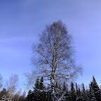 2011-snejinka-88.jpg
