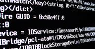 Curso gratuito de programação e desenvolvimento de aplicativos em interface e web