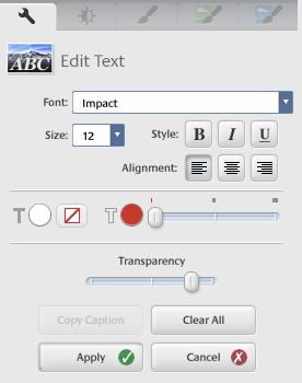 picasa edit text