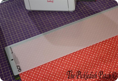 Strips for binding (2) (Medium)