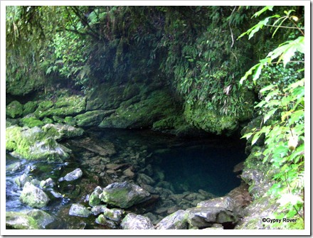 The Riwaka Resurgence in the Kahurangi National Park. Headwaters of the Riwaka river.