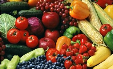 Definisi makanan organik