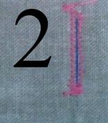 Buttonhole 2