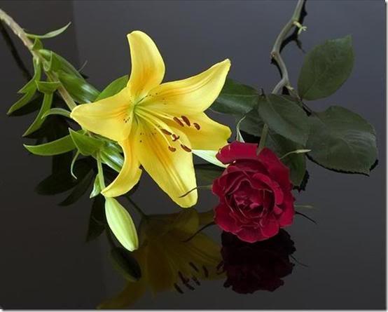 san valentin flores (28)