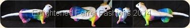 RainbowFerret