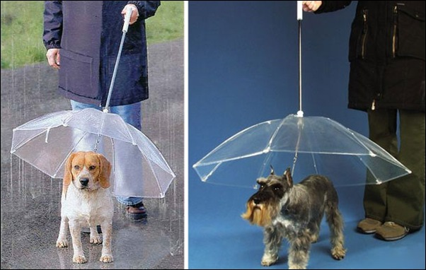 creative-umbrellas-15