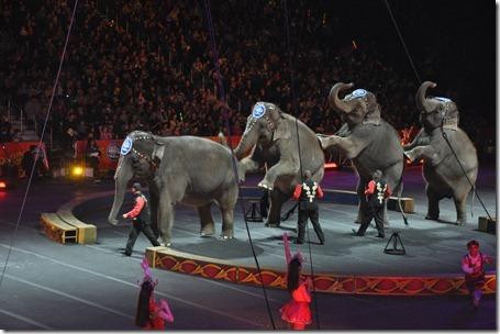 circus fun 021613 038