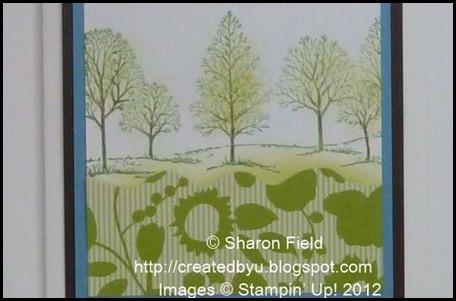 A Patchwork landscape wtih gently curving hills