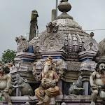 Shri-Lanka (17).jpg