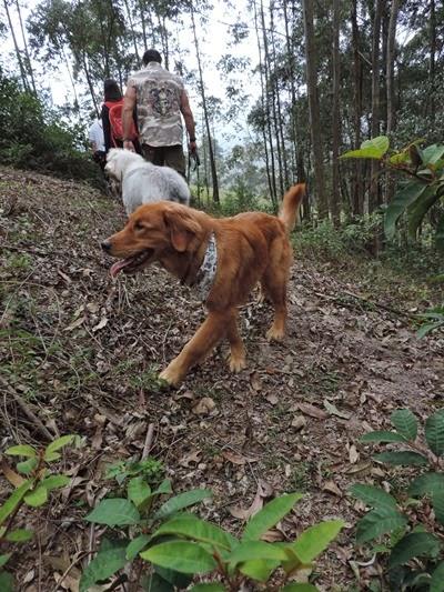 Trekking 11 (3)