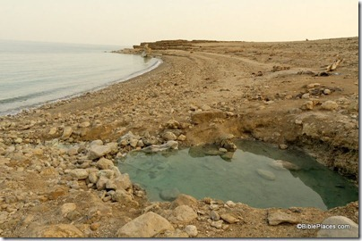 Dead Sea hot spring on shore, tb022806413