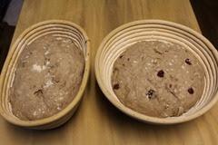 spelt-rye-cranberry-walnut-loaf_210
