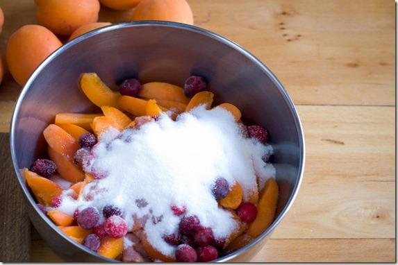 Apricot pie-3592
