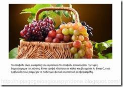 τα φρούτα του φθινοπώρου (3)