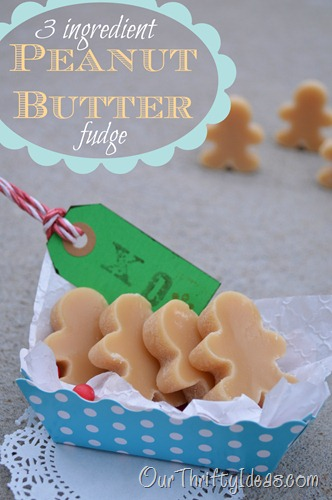 Our Thrifty Ideas: 3 Ingredient Peanut Butter Fudge
