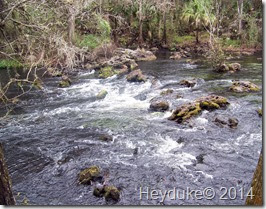 Hillsborough River State Park 017