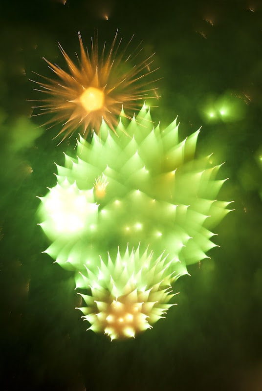 david-johnson-fireworks-26
