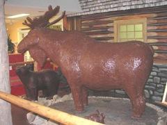 11.2011 Huge chocolate moose1