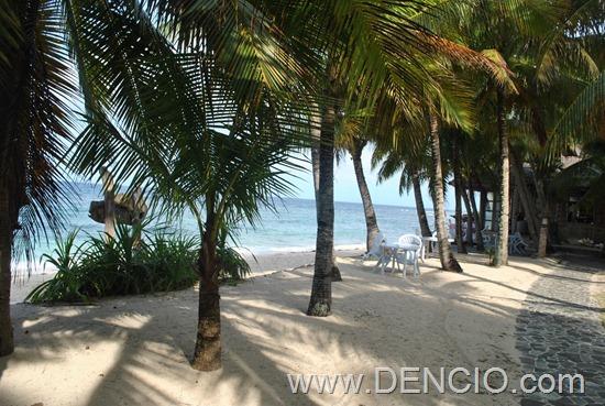 Coco Grove Resort Siquijor 36