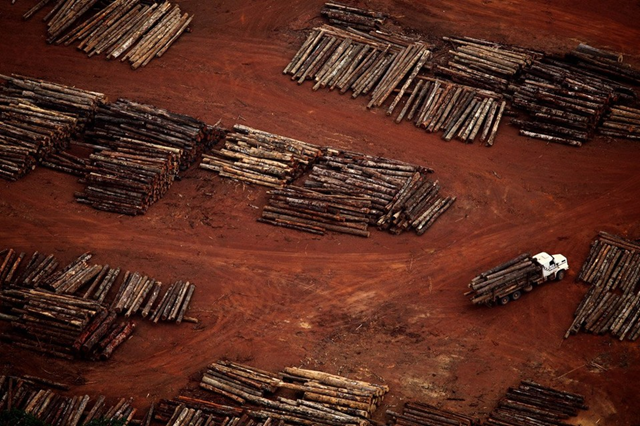 An aerial view of illegal logging in a sawmill area in Rondon do Pará, Pará, Brazil. November 2011. Photo: Rodrigo Baleia