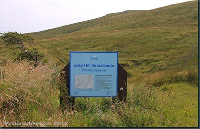 28-grey-hill-sign