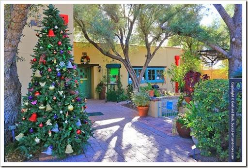 131203_TucsonBotanicalGarden_002