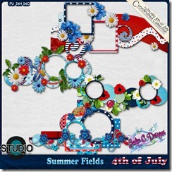 4th of July Coordinating Product