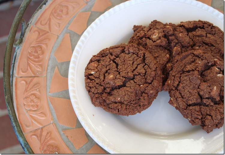 Chocolate Cookies with White Chocolate Chips 001