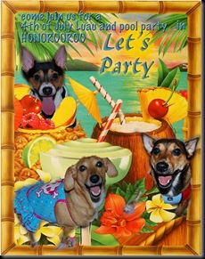 party fiesty three