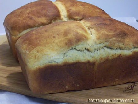 salt-rising-bread 040